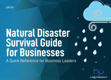 Natural disaster survival guide for business